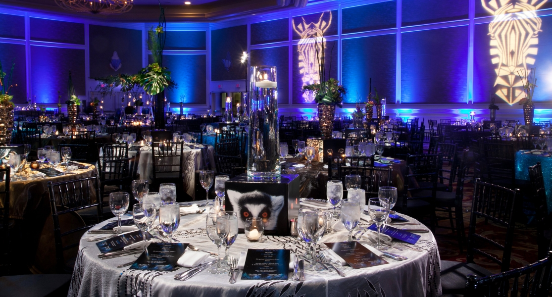 """INTO THE WILD"" Corporate Gala"