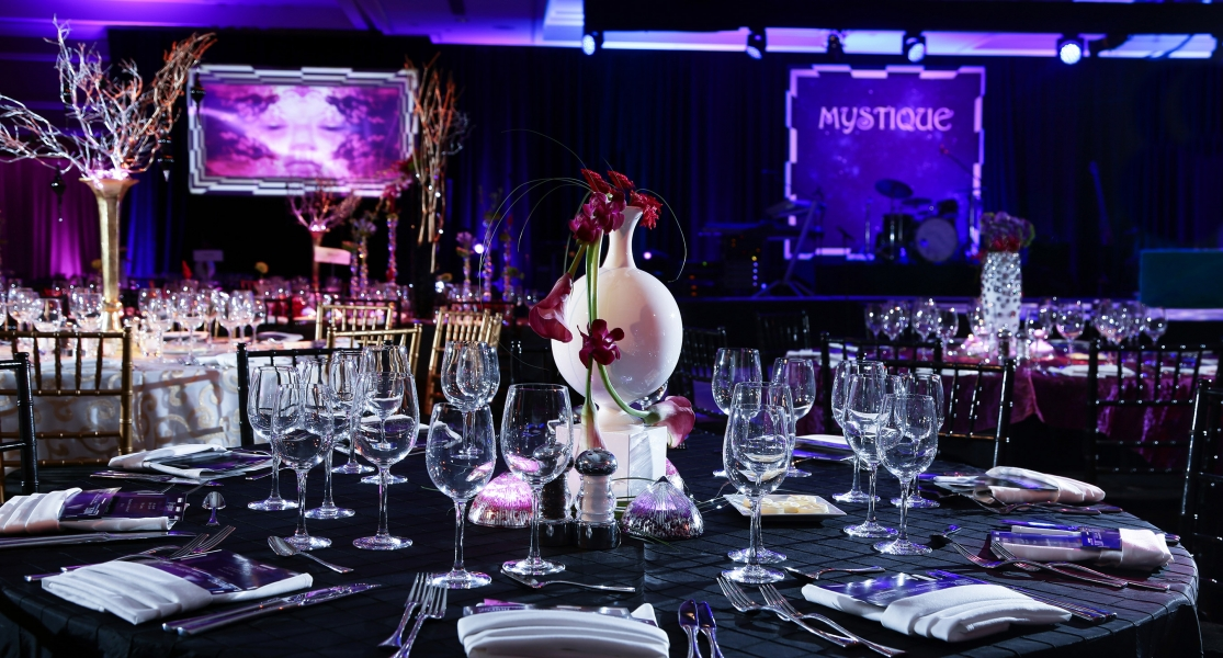 """MYSTIQUE"" Corporate Gala"