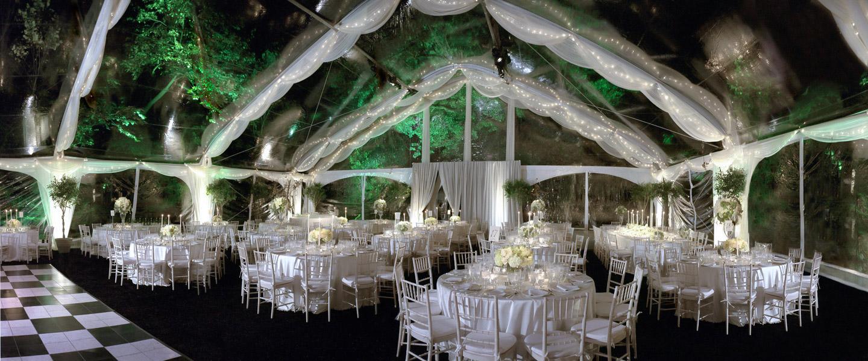 Wedding & Celebration